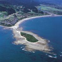 青島太平洋マラソン大会のコース、宿泊、アクセス、駐車場、交通規制は?
