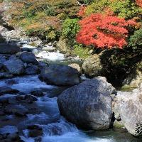 九州秘境の宮崎県椎葉村観光の紅葉の見ごろ、時期、アクセスは?