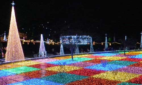 和歌山 出会い の 広場