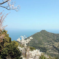 RVパークと温泉利用の車中泊で楽しむ宮崎県の桜のお花見観光穴場の遠見山森林公園