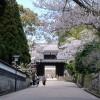 九州の小京都の飫肥城下町の歴史観光スポットと飫肥城下町祭り2016は?