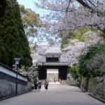 九州小京都の飫肥城下町の歴史観光と本格焼酎の試飲は?