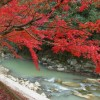 宮崎県都城市の青井岳温泉の紅葉の見ごろ状況と情報 入浴料金 時間 アクセス 駐車場は?
