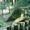 宮崎県初詣おすすめのパワースポット穴場神社とアクセス、駐車場は?